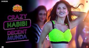 Guru Randhawa – Crazy Habibi Vs Decent Munda Lyrics