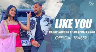 Like U (Tere Jaisi) Song Lyrics